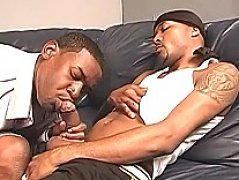 Ebony guy blowing cock deep and hard. Ebony guy gives throat job