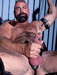 Hunky stud Johnson shows off his pierced cock as this gay bear masturbates