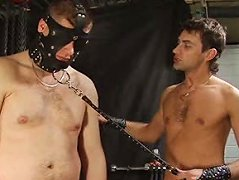 Masked man gets chained up and lets his master torture his limp love club