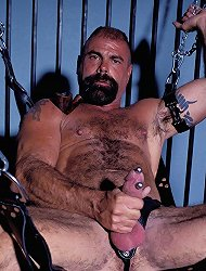 Kinky gay bear showing off his meaty cock and playing with it by stroking it live